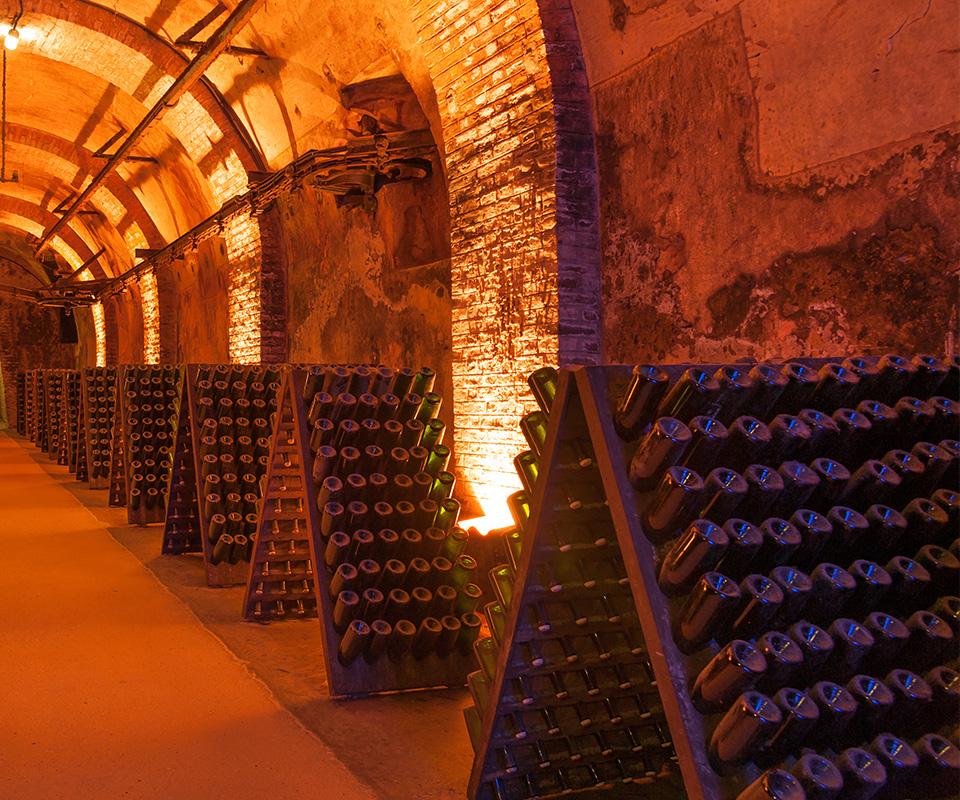 Les meilleurs Champagne sont à la Cave Roosevelt (Lyon 6)