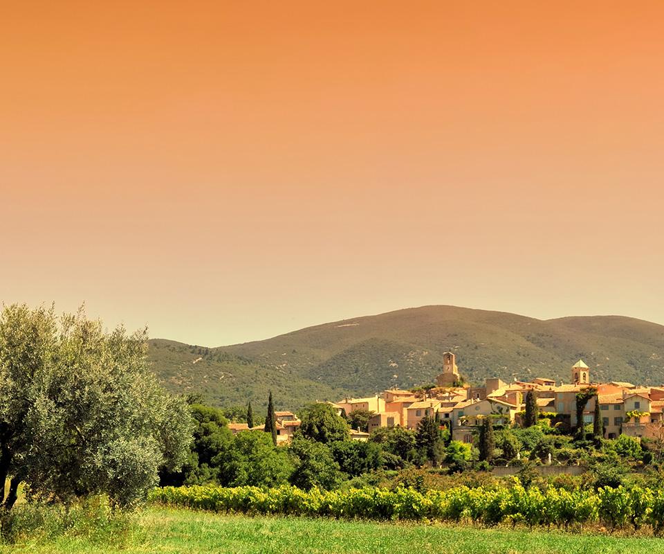 Les meilleurs vins de Provence sont à la Cave Roosevelt (Lyon 6)